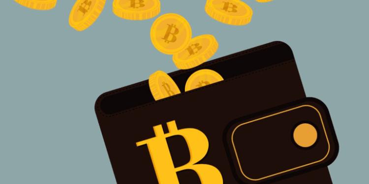 krypto peněženky